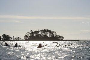 Port Nelson Summer Sea Swim Series @ Nelson Yacht Club